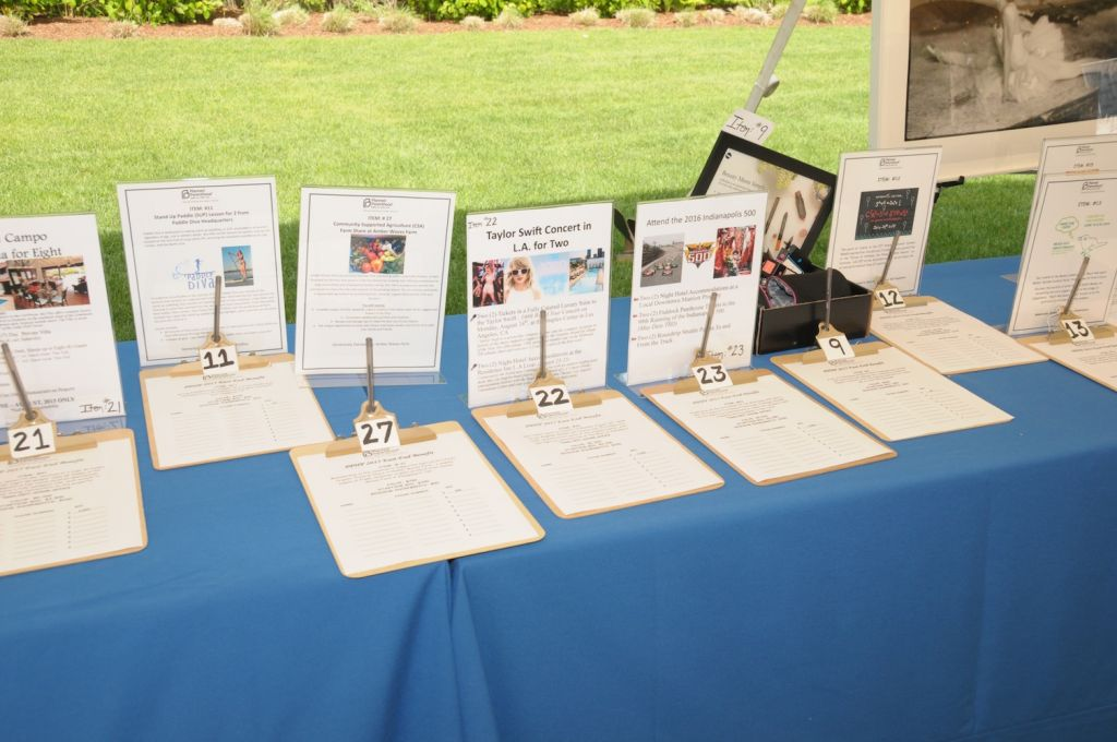 PPHP2015 c. Richard Lewin (11) silent auction