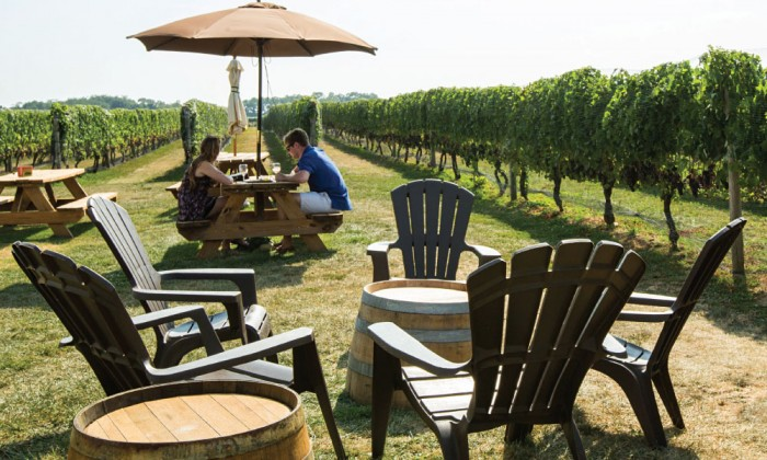 best dating long island wineries with music near me