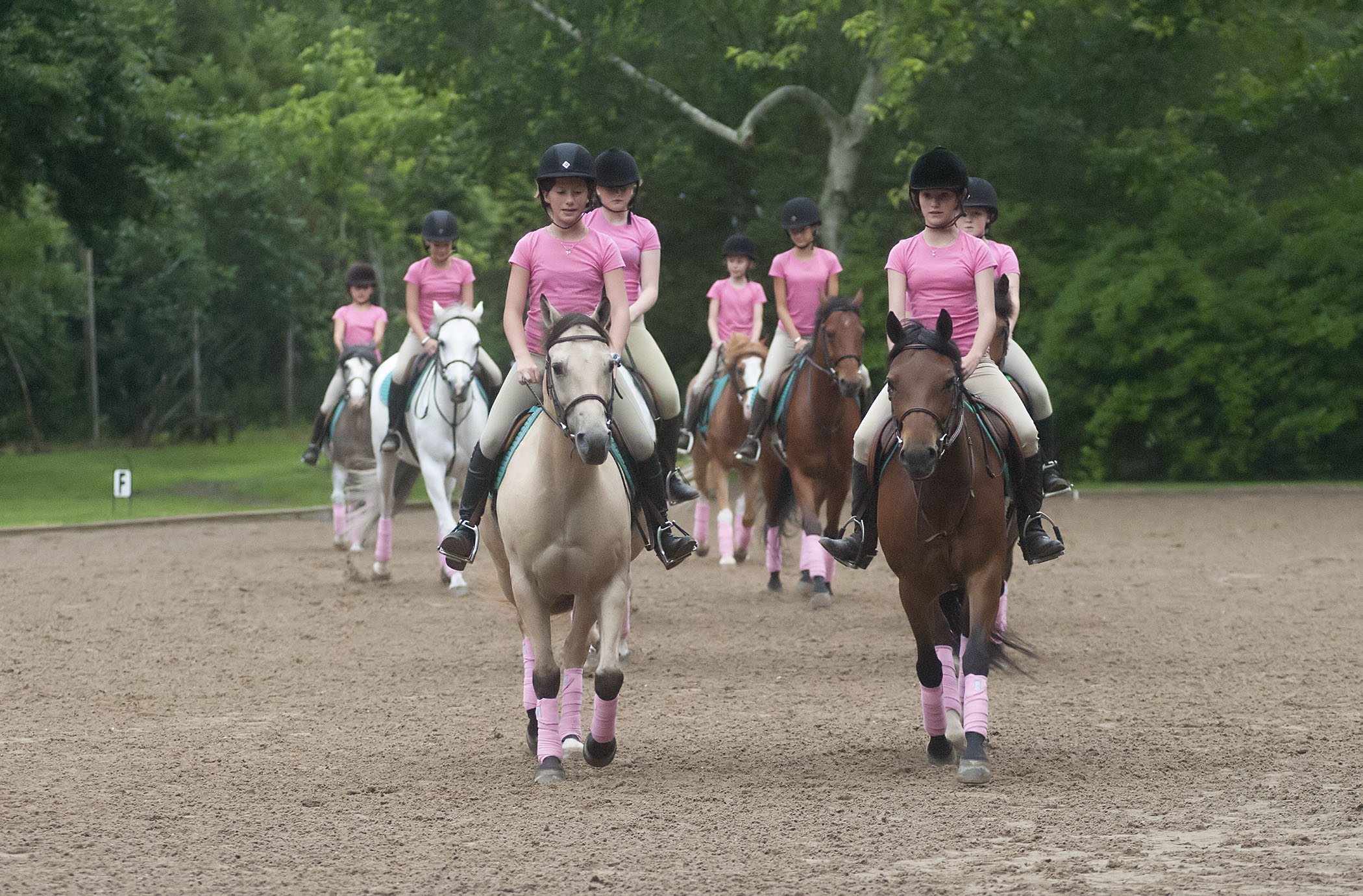 image: the pony drill team (credit: michael heller)