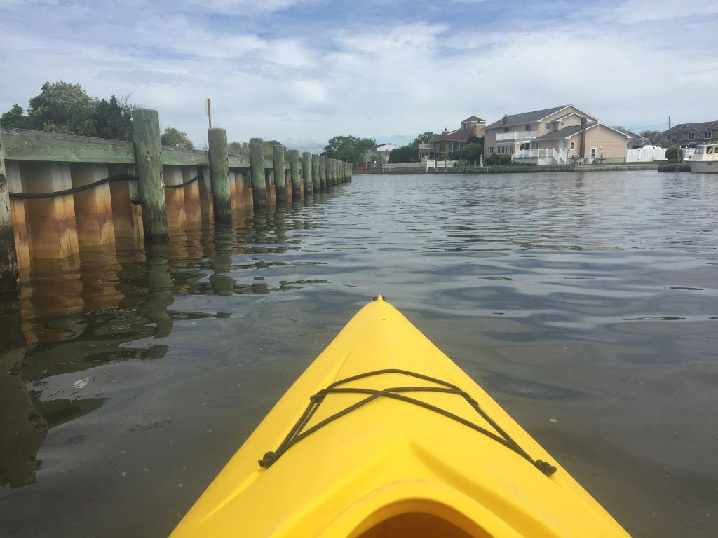 image: taking a paddle with boyle near the west sayville offices
