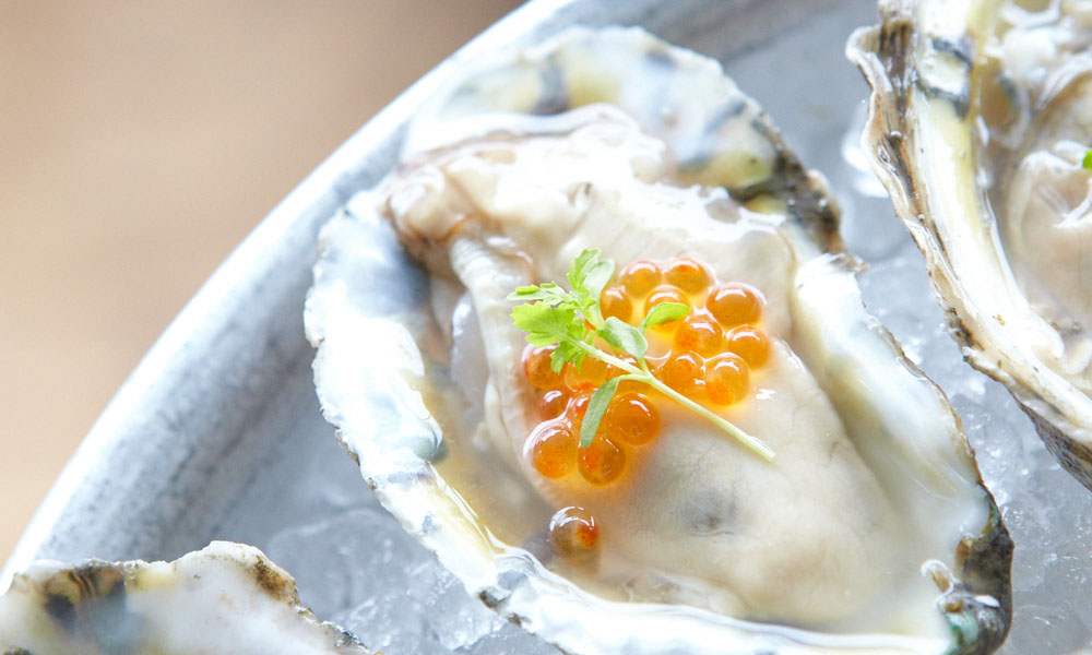 JulyAug15__0001_chefschampaign