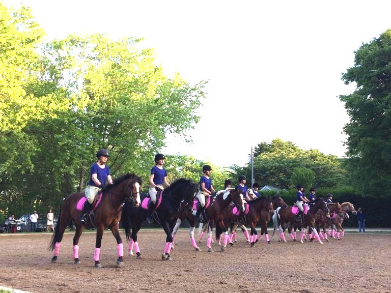 image: the pony drill team