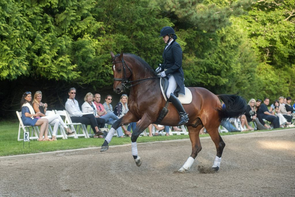 image: wick hotchkiss does a dressage demo