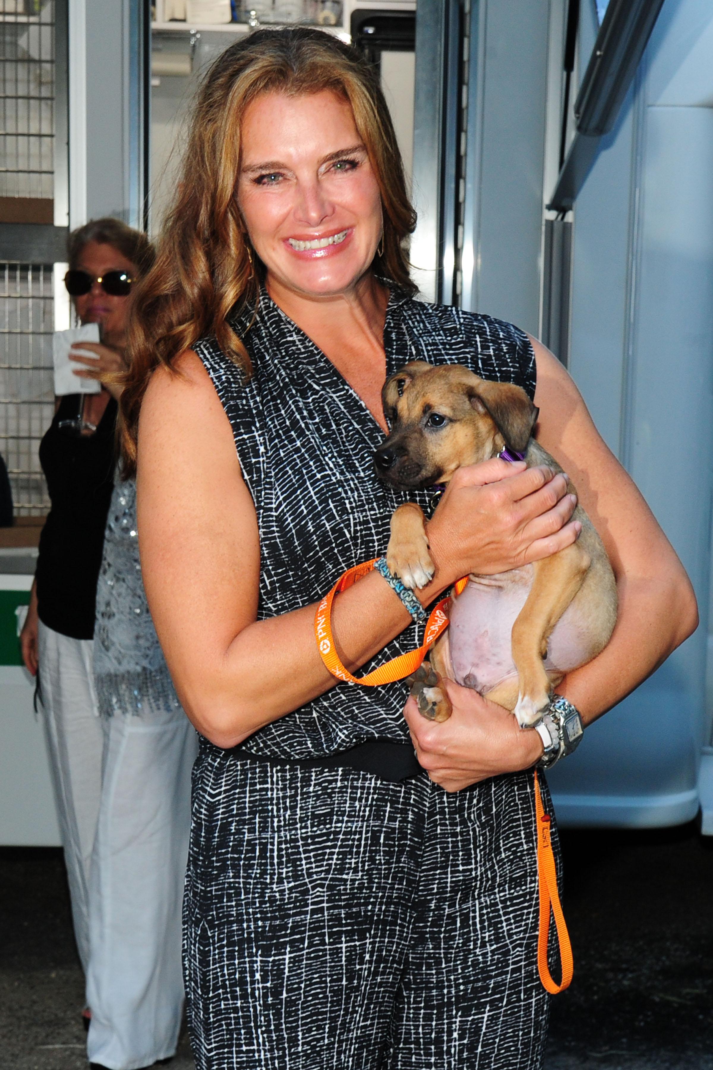 Emcee Brooke Shields holds an adorable pup (credit: owen hoffmann/patrickmcmullan.com)