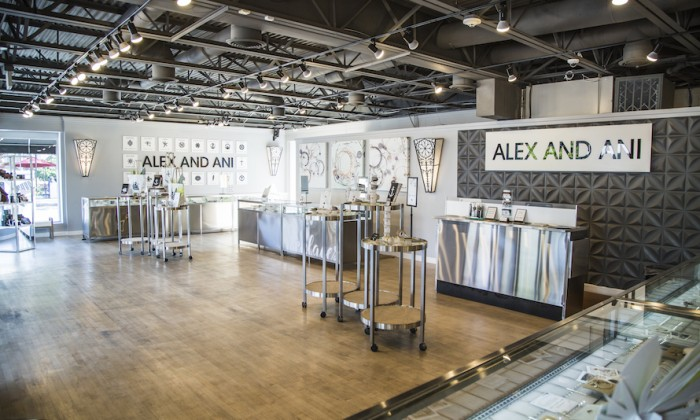 Alex and ani opens in roosevelt field mall long island for Roosevelt field jewelry stores