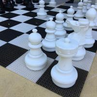 A large chess board image: elizabeth cantwell