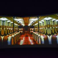 Well-known for their wine, PANORAMA showed viewers scenes of wine cellars and vineyards. image: casey kelbaugh