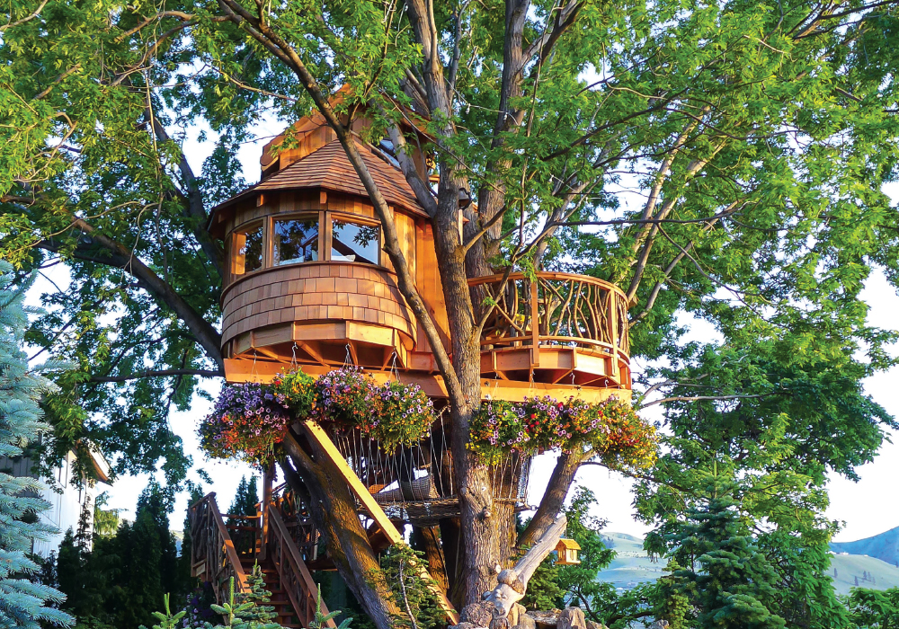 Oct 16_0013_Treehouse 2