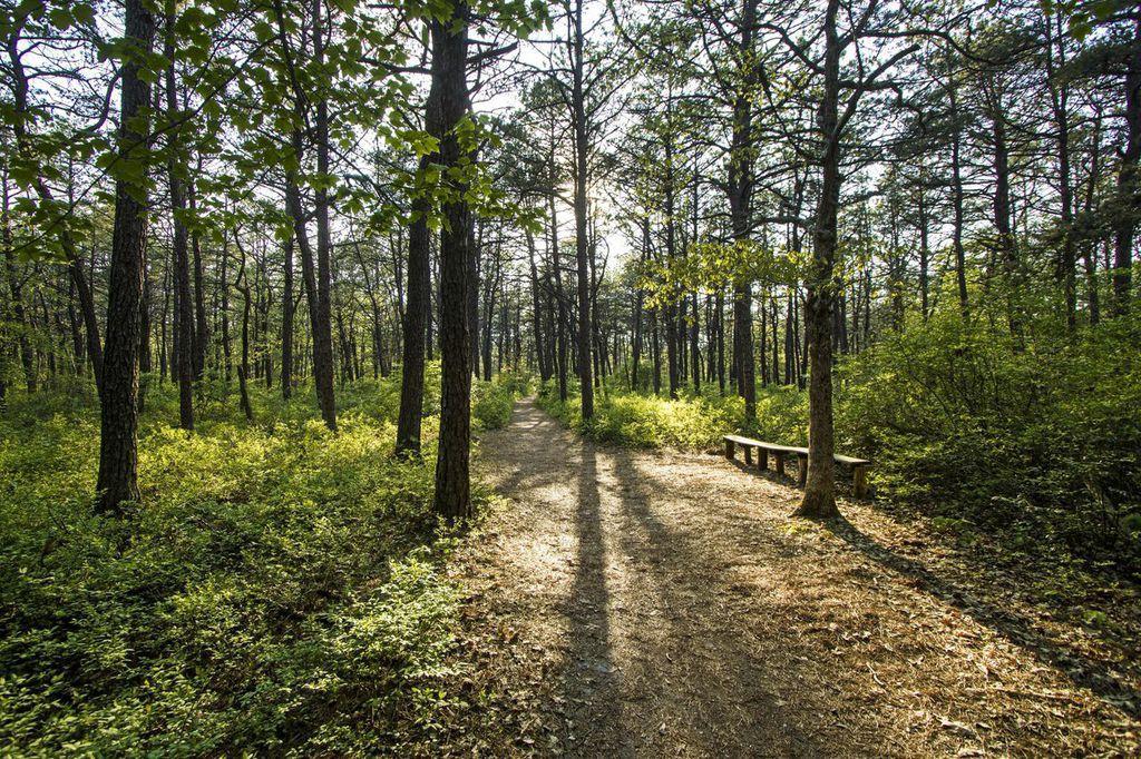 East End Hiking Trails