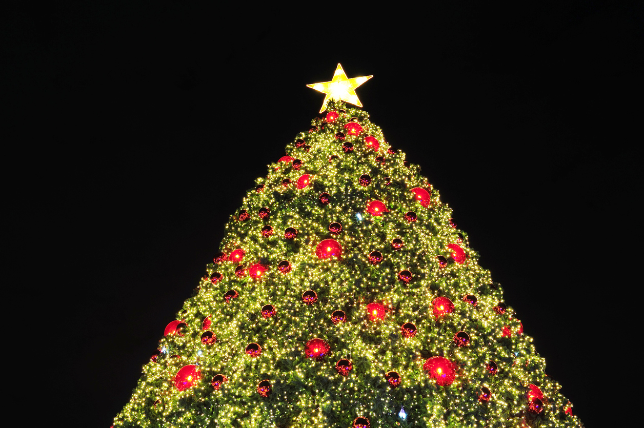 Long Island Christmas Tree And Menorah Lighting Guide 2016