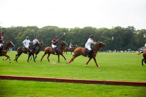 Watching live polo on September 17