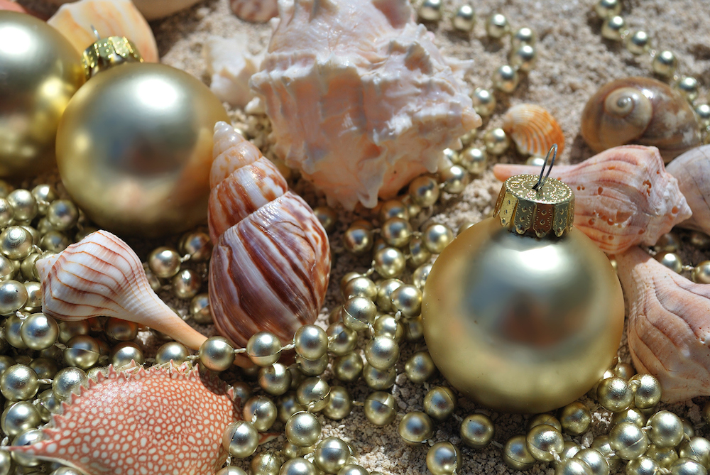 Gold Christmas Ornaments Shells Beads Washed Ashore on Sandy Beach