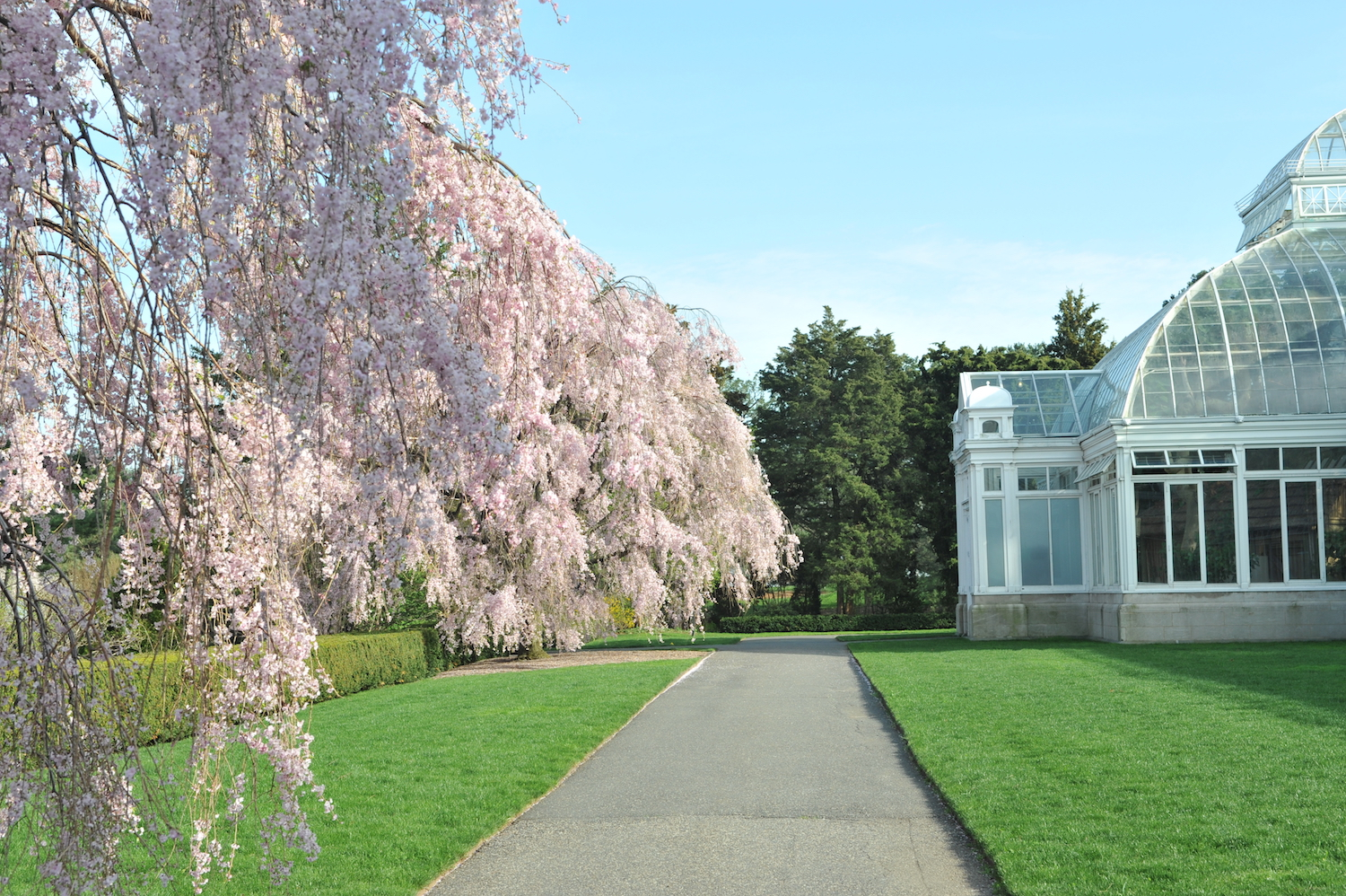 New York Botanical Garden, Bedford Park, Bronx