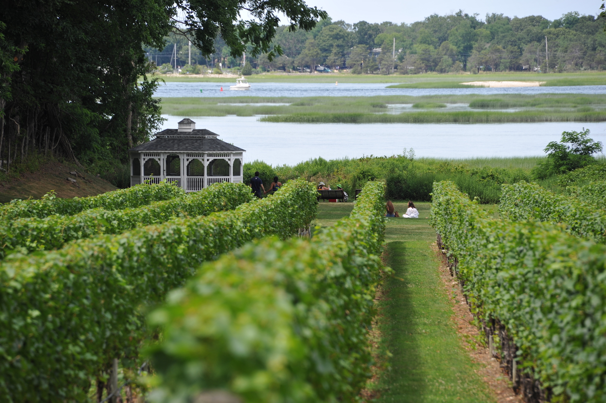 St James Winery Long Island