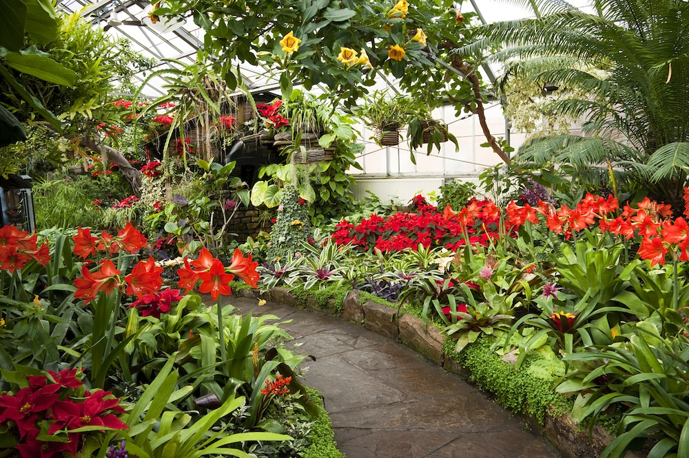 5 Indoor Gardens To Visit On A Rainy Nyc Day Long Island Pulse