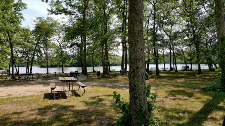 Top Spots For Picnics On Long Island Long Island Pulse